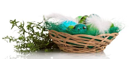 Colored Easter eggs in the basket and grass isolated on white background.