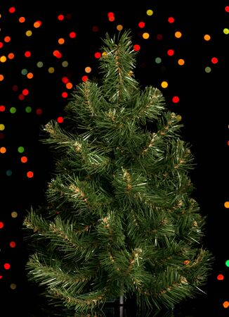 Small Christmas tree is ready for decoration, on black shimmering background