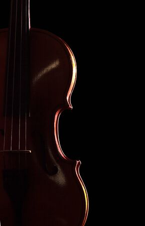 Musical instrument - violin isolated on black background