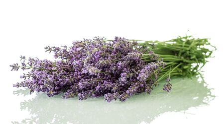 Bouquet of fragrant lavender isolated on white background