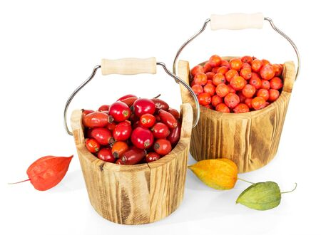 Two wooden buckets with rosehip and Rowan berries, isolated on white background