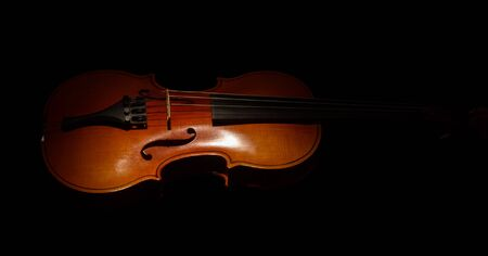 Graceful little violin, isolated on black background 版權商用圖片