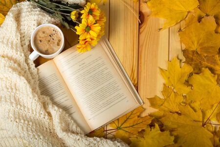 Autumn charm, chrysanthemum, book and warm scarf in yellow leaves Banque d'images