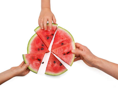 Slices of fresh juicy watermelon sorted by hands isolated on white background