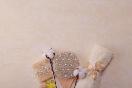 Top view. SPA set with an empty space for an inscription. Body brush, soap and a branch of cotton