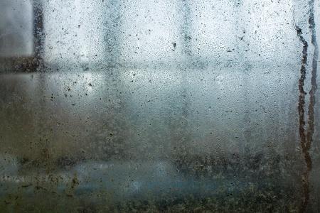 kropla deszczu: Skroplin wody spada w oknie brudny-cieplarnianych Zdjęcie Seryjne