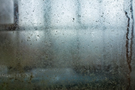 Water condensate drops on dirty greenhouse window Stock Photo - 8445811