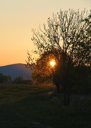 orange sunset: Orange sunset near pond under mountains