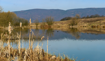 cheroot: Pond on hill in town Usti nad Labem