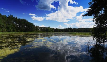 bohemia: Pond in south Bohemia named Zdarsky near Sevetin village