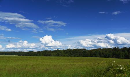 ceske: Blue sky and white clouds in south Bohemia near village Sevetin