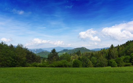 Mountains Pieniny in Slovakia and Poland in June Stock Photo