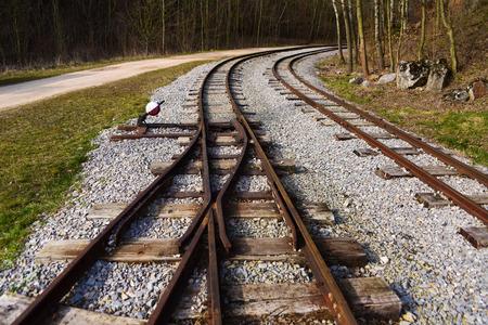 narrow gauge: Narrow gauge tracks in mine near Karlstejn  in spring time