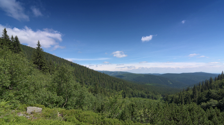 sudetes: Sunny summer day in Krkonose mountains national park