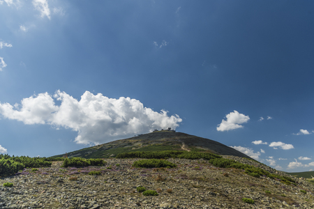 Krkonose mountains in summer sunny hot day