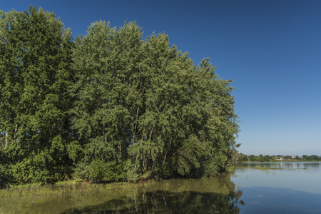 budejovice: Summer day near south Bohemia ponds in Ceske Budejovice town