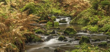 czech switzerland: Autumn time near river Krinice in national park