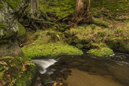 czech switzerland: Tempo di autunno vicino al fiume K?inice nel parco nazionale