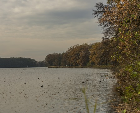 budejovice: Cernis pond in autumn cloud cold time Stock Photo
