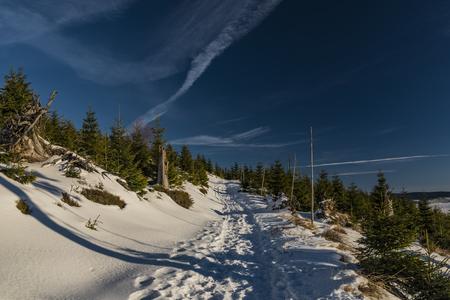 inversion: Sunny day in Jeseniky mountains near Kralicky Sneznik hill with snow