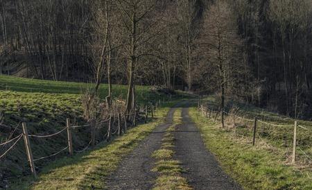 ceske: Path in Ceske Stredohori mountains in spring evening