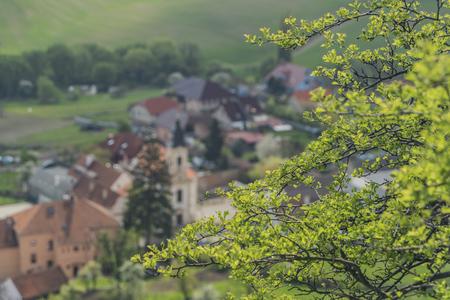 wine road: Nice sunny spring near Klentnice village in Palava area