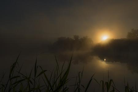 rushes: Dark orange sunrise near ponds in spring morning