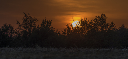 moravia: Sunset over trees near Lukov village in hot summer evening