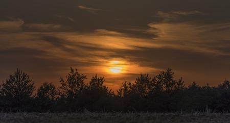 Sunset over trees near Lukov village in hot summer evening