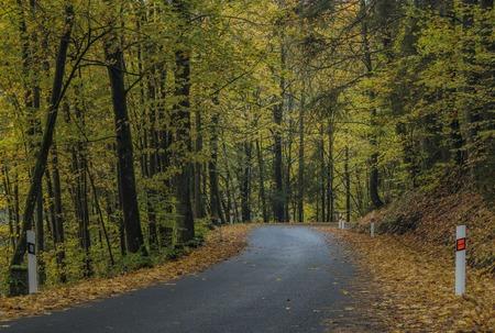 Road near Jesenny village in autumn dark color evening