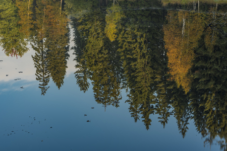 Kladska pond with rebound in water in autumn sunny morning