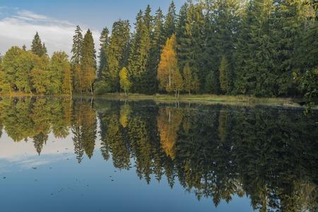 turba: Estanque de Kladska con rebote en el agua en la mañana soleada de otoño