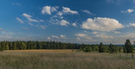 Slavkovsky les mountains in summer sunny sunset evening near Krizky area