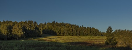 Meadows and forest in Sumava national park in south of Bohemia Reklamní fotografie