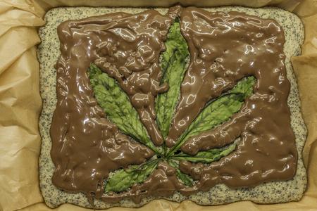Cooking of marijuana poppy seed cake with chocolate and pink fruit glaze Zdjęcie Seryjne