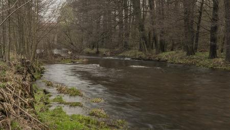 Svatava river near Sokolov town in west Bohemia in cloudy spring day Reklamní fotografie