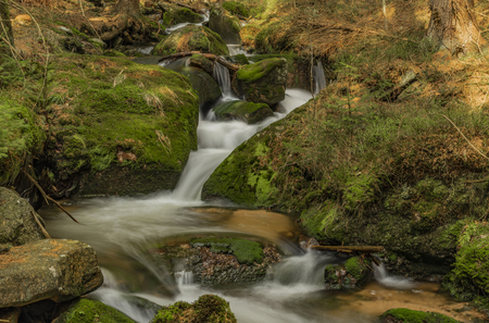Big spring water on nice creek in spring day in Krusne mountains in north Bohemia