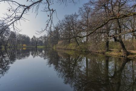 Spring sunny morning near Schwanenteich pond in Zwickau city and park in center
