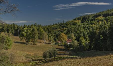 National park Sumava in color autumn sunny morning with dry meadows