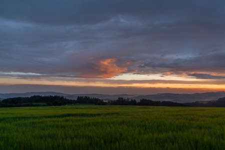 Sunset in hot summer rainy evening near Roprachtice village near national park Krkonose