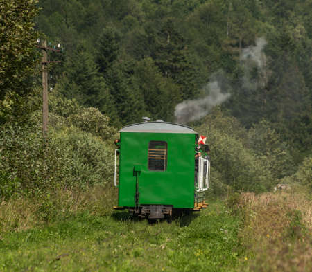 Narrow gauge railway with steam train near Majdan station in Poland near big forests