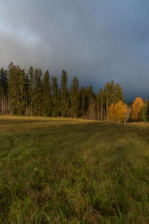 Sunrise near forest and road to centre of national park Sumava with color cloudy sky