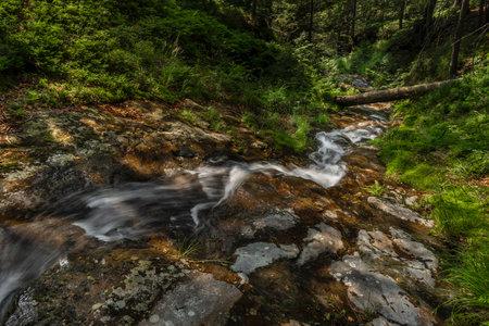 Small waterfall near Kouty nad Desnou village in summer day in forest