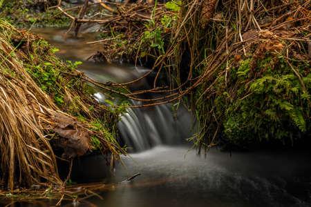 Farsky creek in spring color morning near Roprachtice village in Krkonose mountains