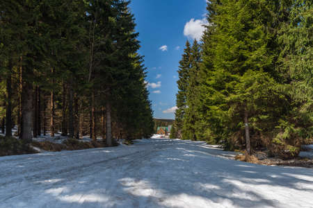 Snow on spring meadow near Orle village in Jizera mountains in Poland in sunny nice day 免版税图像