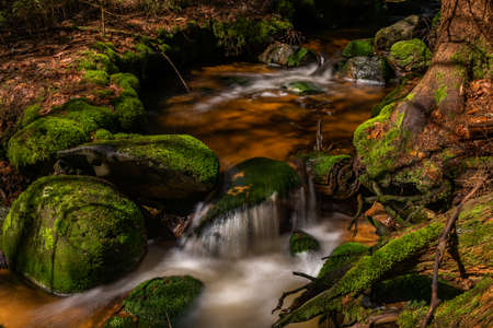 Skrivan color creek in Krusne mountains in spring morning after cold rain