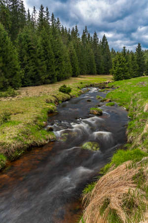 Rolava river with fresh meadows and forests in Krusne mountains