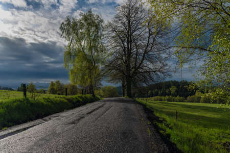 Pasture land in spring fresh morning after night rain with white clouds Reklamní fotografie