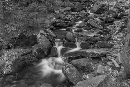 Small creek in Krkonose national park in cold spring with snow 写真素材