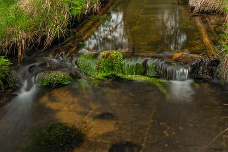 Milikovsky creek on Sumava national park in spring color fresh morning
